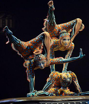 21 avril 2015 - Le Cirque du Soleil est à la croisée des chemins : Rappelant que le Cirque du Soleil a vu ses revenus baisser depuis quelque temps, le chroniqueur Alain Dubuc affirme que l'entreprise est à la croisée des chemins.