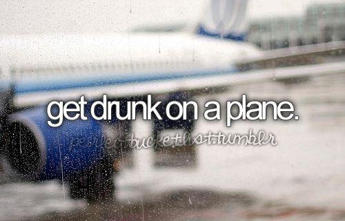 yes pleaseBucketlist, Buckets Lists, Buckets Listtt, Airplanes Flight, Drunk On A Planes, Buckets List3, Flight Planes, Flight Wings, Lifebucket Lists