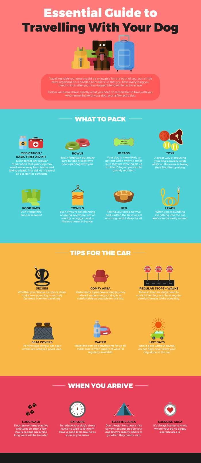 Small Dog Travel Your Essential Planning Guide For Visiting The Uk Or The Usa Dog Travel Dog Infographic Dog Training Obedience