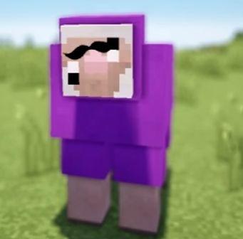 yo yo yo look at this ugly sheep name purple shep