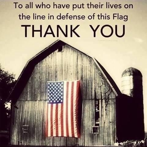 To all who have put their lives on the line in defense of this Flag: THANK YOU!