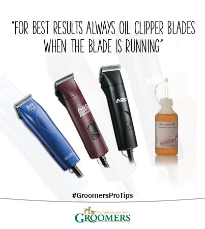 Oiling clipper blades