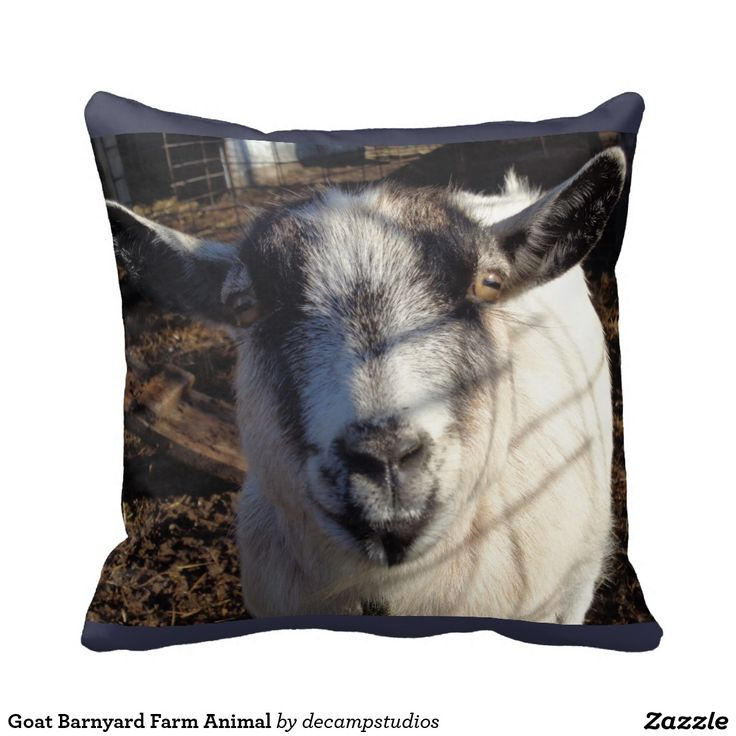 Animal Pillow Blanket : 17+ best images about Goats on Pinterest Baby goats, Bath mats and Kid