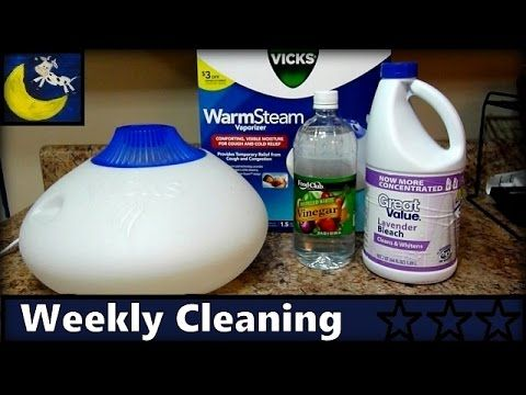 How To Clean Vicks Warm Steam Vaporizer Disinfect