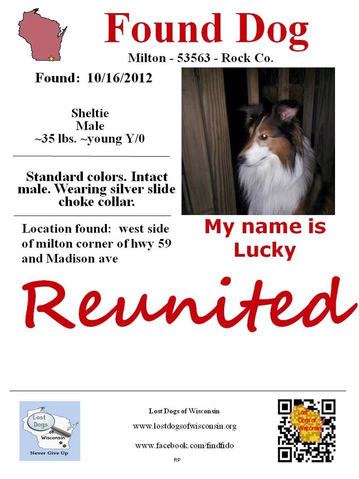 Pin by lost dogs of wisconsin on reunited pinterest