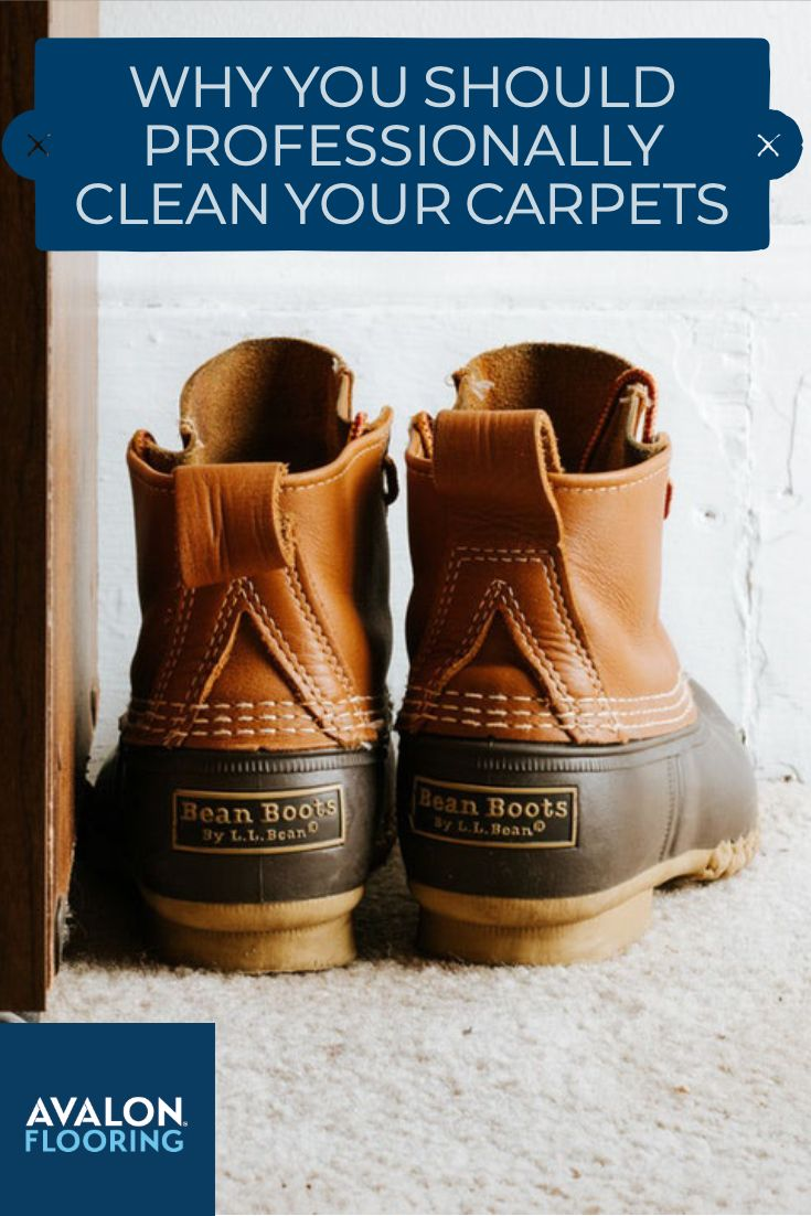 Why You Should Have Your Carpet Professionally Cleaned Area Rugs Floor Area Rugs Area Rugs Cheap
