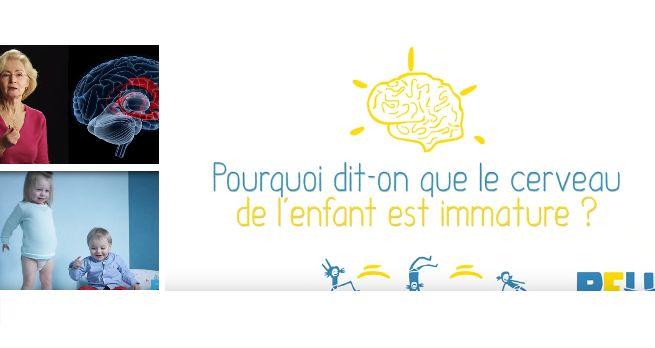 Pourquoi dit-on que le cerveau de l'enfant est immature ? En quoi cette immaturité entraine des tempêtes émotionnelles chez les petits jusqu'à 5/6 ans ? (video)
