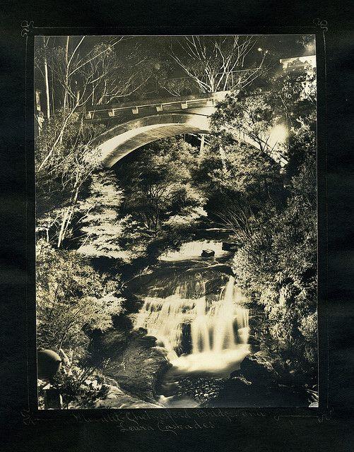 Floodlit Chelmsford Bridge and Leura Cascades    From an album of Harry Phillips photos                                              From an album of Harry Phillips photos
