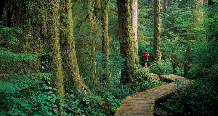 Vancouver Island   Destination BC - Official Site