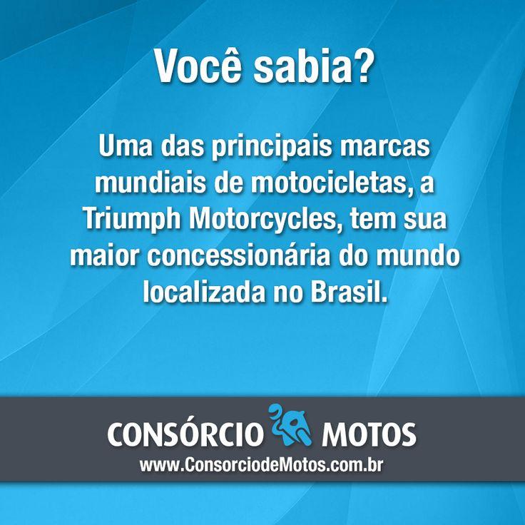 #CuriosidadeSobreMotos  Bom dia! Acesse nossa matéria e veja onde está localizada a maior loja da Triumph: https://www.consorciodemotos.com.br/noticias/brasil-tera-maior-concessionaria-da-triumph-no-mundo?idcampanha=288&utm_source=Pinterest&utm_medium=Perfil&utm_campaign=redessociais