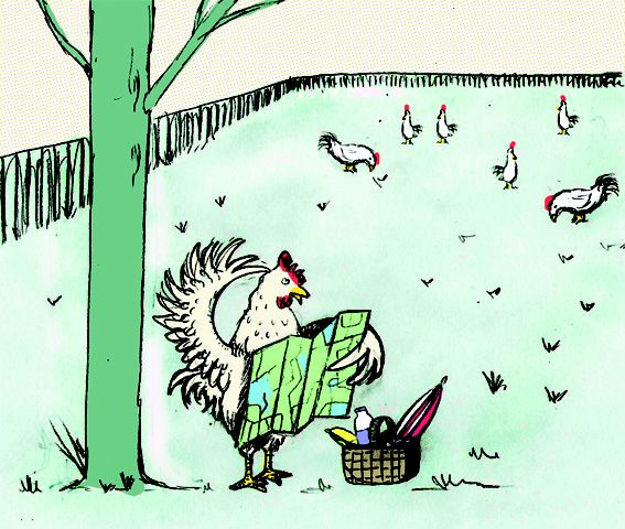 Illustration for article about Free Range chicken.