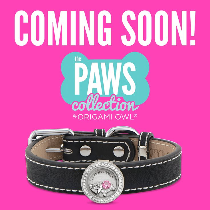 Paws lockets! From Origami Owl for your fur babies!! July 25th launch date! https://dreambig.origamiowl.com/ #lockets #dogjewelry