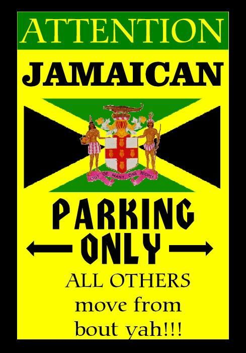7df286bdae2d6defa956f64228aae4b5 jamaican dishes jamaican recipes 134 best jamaican memes images on pinterest caribbean, jamaica