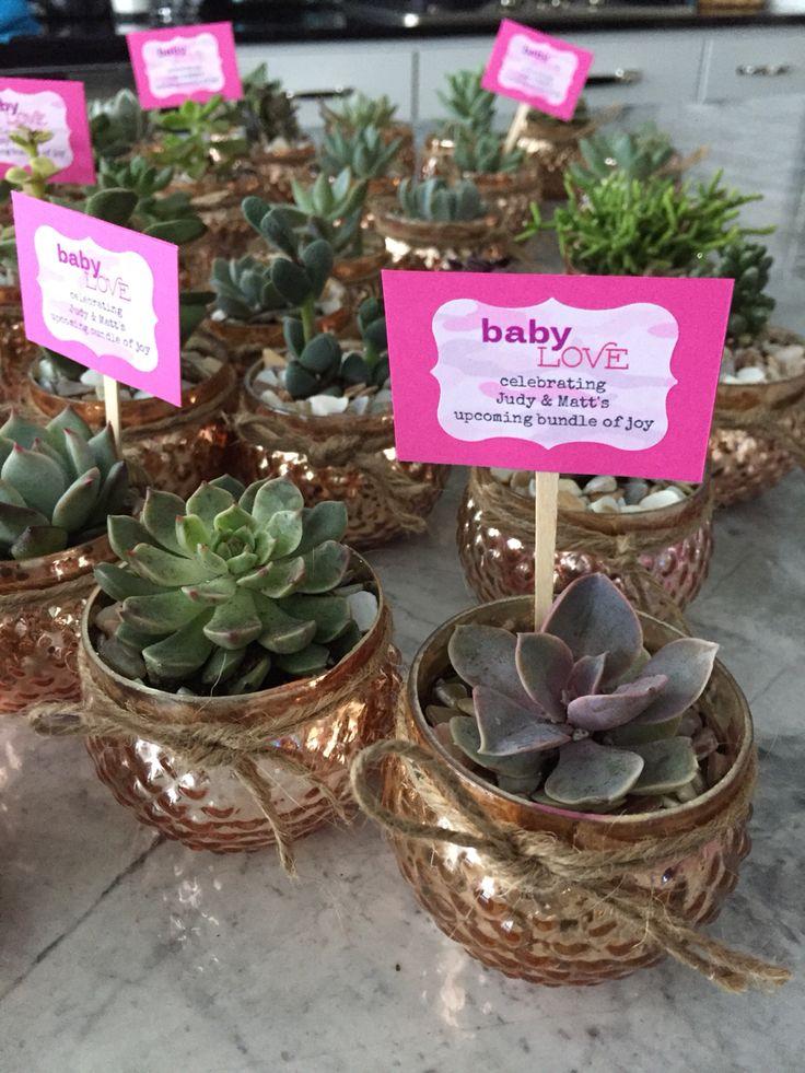 Succulent baby shower favors
