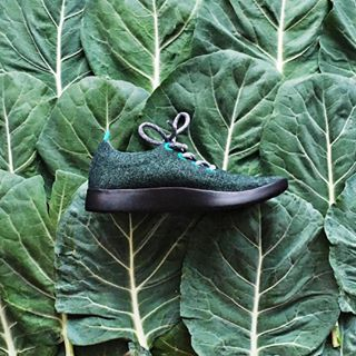 The Wool Runners by Allbirds --- turns out superfine merino makes the world's most comfy shoes and made with natural material in an eco-friendly sustainable way