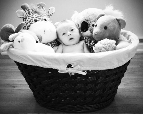 206 best newborns images on pinterest infant photos baby photos