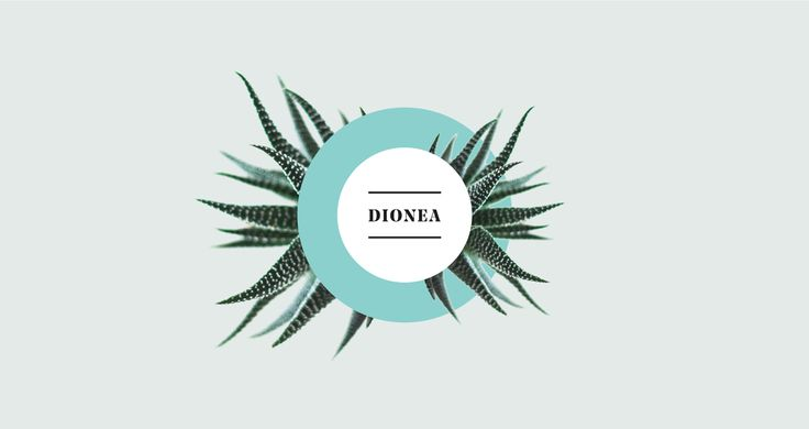 Dionea | Branding on Behance