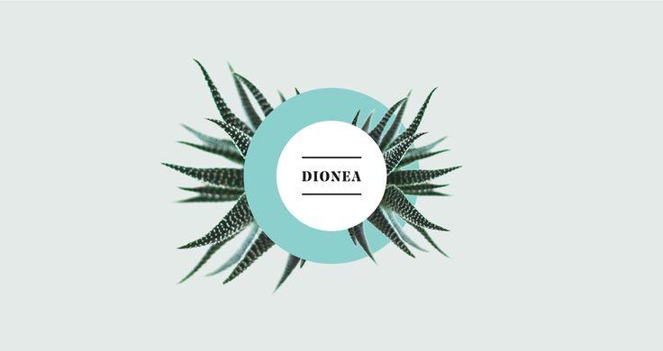 Dionea   Branding on Behance