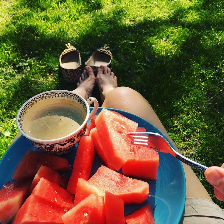 Sommarens vattenmelon 2016
