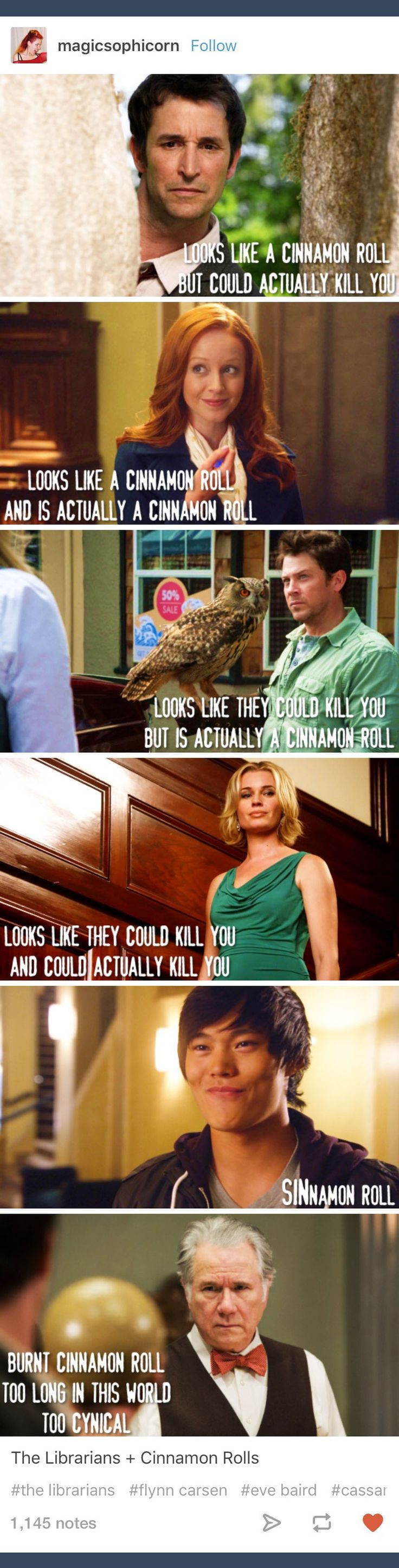 Tumblr; The Librarians