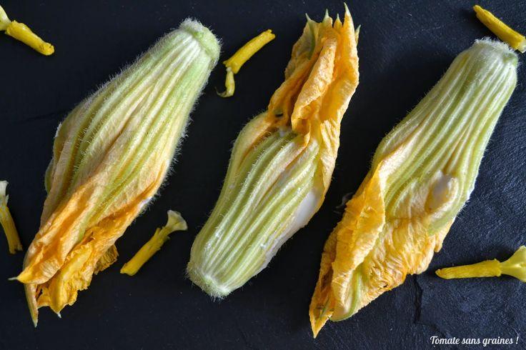 Fleurs de courgette crues farcies au ch vre frais http - Faire pousser citronnier ...