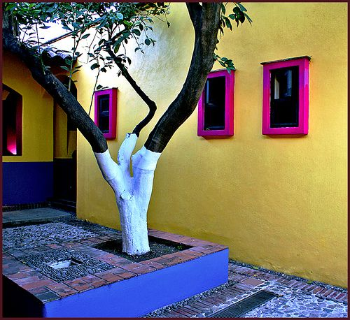 El Patio - Mexican contemporary architecture - a small colorful courtyard