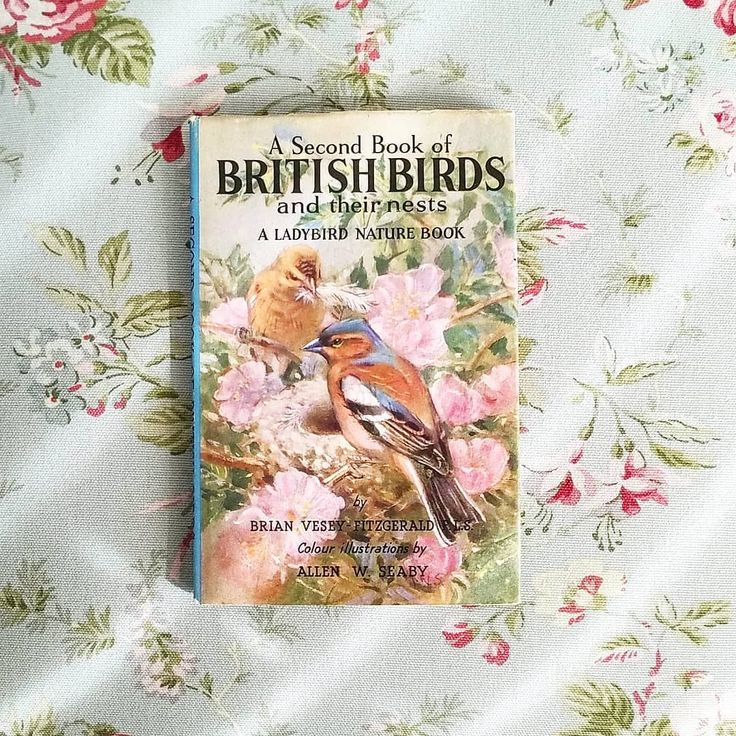 Just The Loveliest Little Book I Found It S A Children S Bird