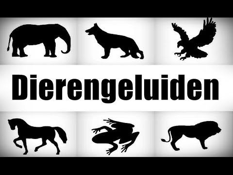 ANIMAL SOUNDS GUESSING GAME QUIZ Dierengeluiden spel raden quiz - Dierengeluiden…