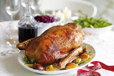 DIMA SHARIF: The Classic Victorian Recipe for Roast Goose & A Quick Class On Goose (Prepping, Cooking and Pairing)