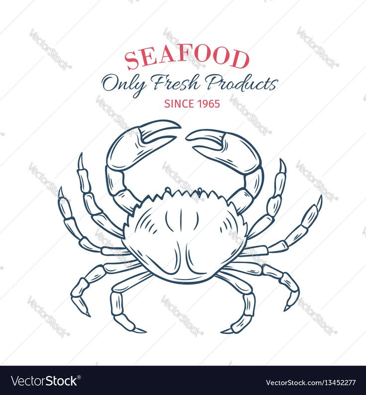 Hand drawn crab icon vector image on how to draw hands