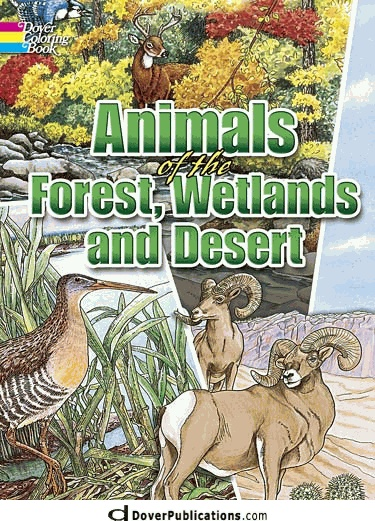 Animals Of The Forest Wetlands And Desert Coloring Book Details
