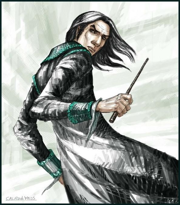 Leaky cauldron essays about severus snape