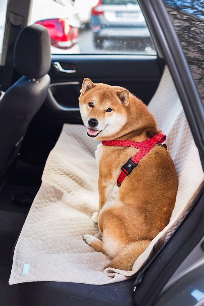 Mata samochodowa dla psa wykonana jest jest z antybakteryjnego materiału, odpornego na tarcie oraz promienie słoneczne. Materiał ma satynowe wykończenie, więc mata nie przesuwa się i nie ściąga, a nasz piesek podróżuje na miłym w dotyku materiale. Mata posiada dwa wycięcia na pasy samochodowe (można przypiąć psa, albo pasażera, który podróżuje z naszym pupilem na siedzeniu).