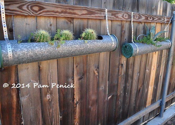 Exhaust pipes turned succulent planters Heather's Xericstyle garden in San Antonio | Digging