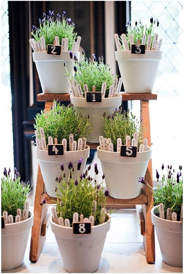 植木鉢ひとつひとつがテーブルを表すユニークな席次表!植物の名前を挿すのに使うラベルにゲストの名前を書きましょう♩