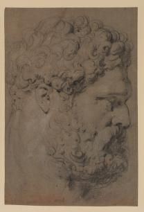Peter Paul Rubens: Head of the Farnese Hercules | The Frick Collection