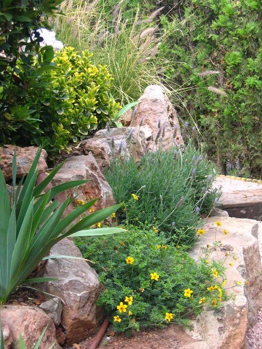 Best Mediterranean Rockery Garden Images On Pinterest