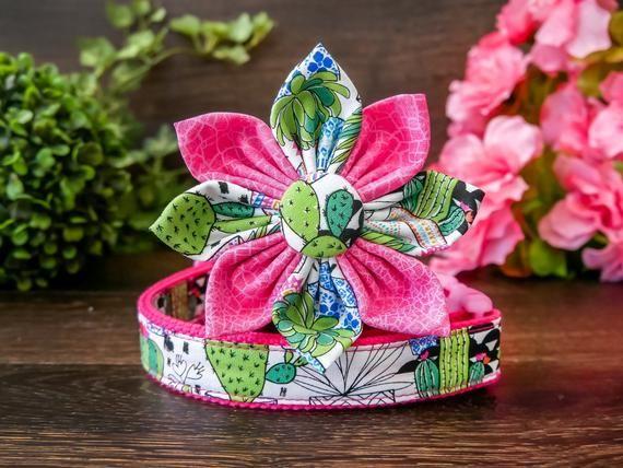 Girl Floral dog collar Succulent Cactus dog collar