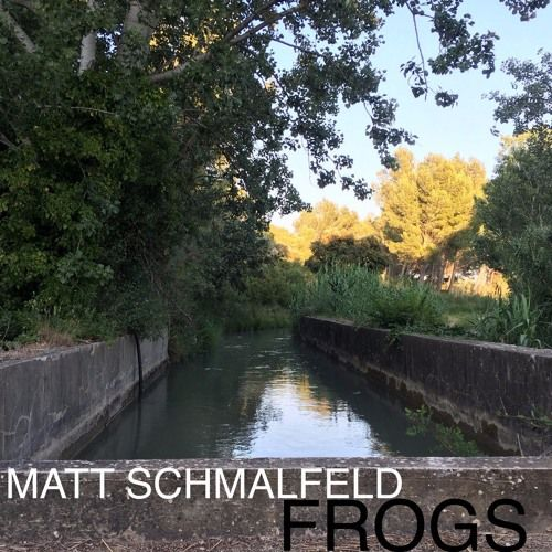 Matt Schmalfeld - Frogs by BURGER RECORDS #music