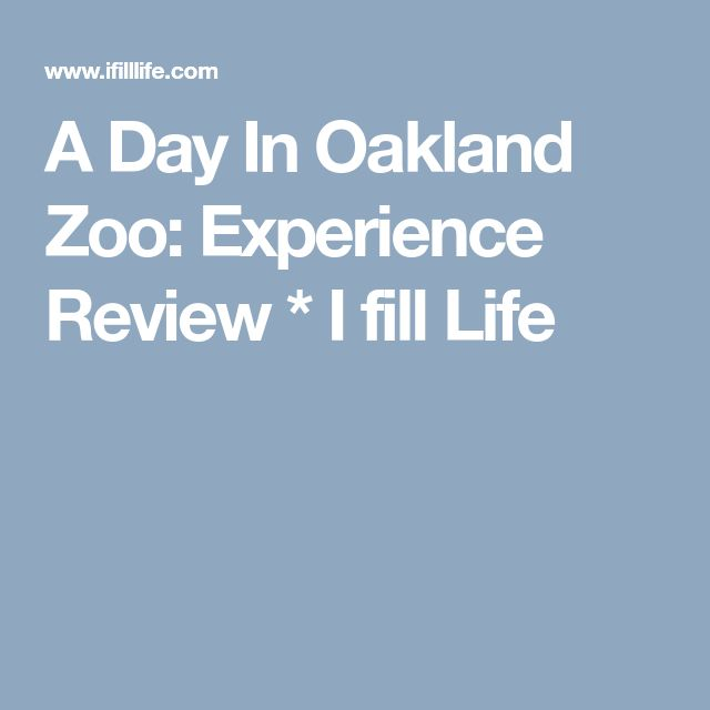 A Day In Oakland Zoo: Experience Review * I fill Life