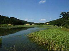 釧路湿原とか尾瀬とか全国には有名な湿原があるけど佐賀にも湿原はあるんだよ それが唐津市の七山にある樫原湿原 樫原湿原は九州の尾瀬ともよばれ自然環境保全地域特別地区に指定されているんですよ 約60種類の珍しい湿原植物が自生していて昆虫野鳥などの楽園にもなっている場所 四季を通じて様々な表情を見せてくれるからどのシーズンに行ってもおすすめ()v ぜひ一度行ってみてね tags[佐賀県]