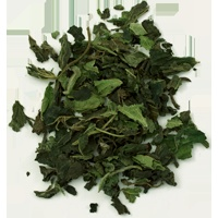 Organic Nettle Tea (closeup)