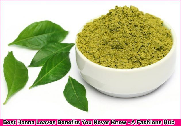 Best Henna Leaves Benefits You Never Knew
