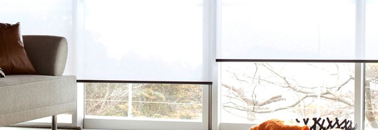 Looking for vertical, roller, fauxwood and cellular window blinds in New Zealand. Buy online Venetian, wooden, roman & blackout blinds @ bestblinds.co.nz.  Visit Now - http://bestblinds.co.nz/
