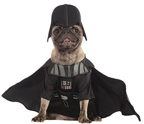 The best halloween costumes for your dog this year! Halloween is nearly here, so we have found the best costumes for your dog to wear this year! 1. Giant Spider Transform your adorable pet into a terrifying, giant spider!  Even the bravest of us cant deny we would have the shock of our lives if we thought we were being chased by a giant spider. You can get yours for £27.99* here. 2. Star Wars Darth Vader A great choice for smaller dogs, make your pet turn to the dark side this halloween…