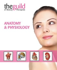 GTi Anatomy and Physiology online learning course  http://www.beautyguildtraining.com/Courses/CourseView.aspx?CourseID=2d11ac6d-90eb-42cb-955c-b497dc44d3d6