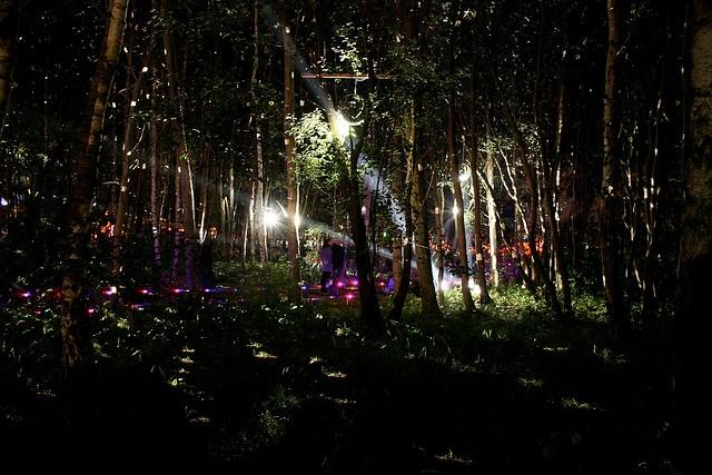 Fusion Festival -  Laerz, Germany- my home village! heimland.