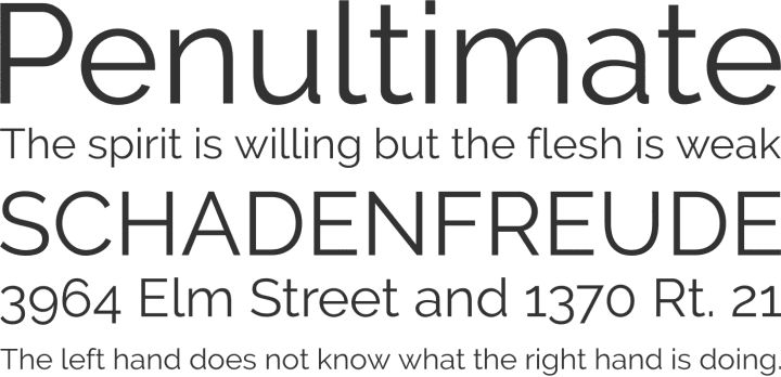 Raleway  Heavy weight geometric sans serif