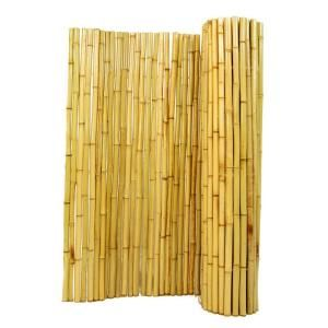 To cover the chain link fence in the backyard??  1 in. D x 6 ft. H x 8 ft. W Natural Rolled Bamboo Fence-HDD-BAME-BF05 at The Home Depot