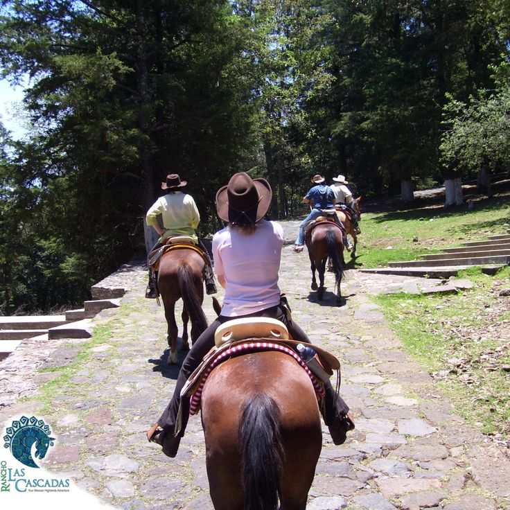 Heels down, chin up and you can do anything!!! Come and experience real riding at the Rancho...